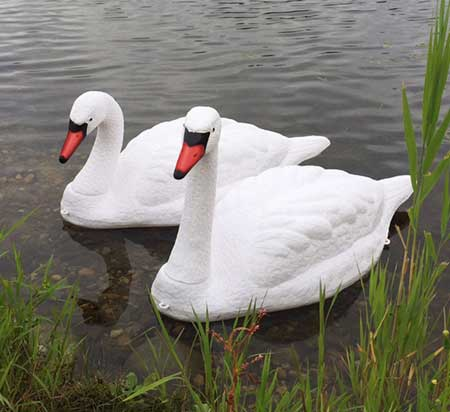 Floating Swan Decoys