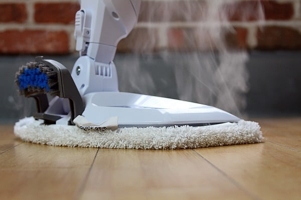 steam cleaning to get rid of carpet beetles