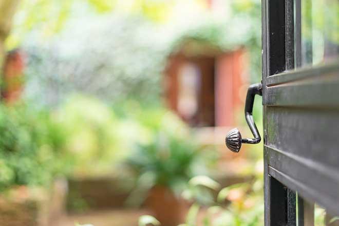 how to get rid of geckos -shut the door