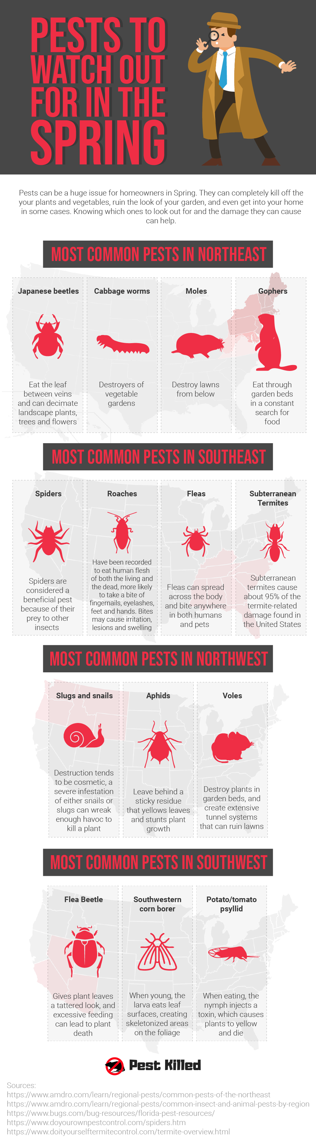 Pests to Watch out for in Spring
