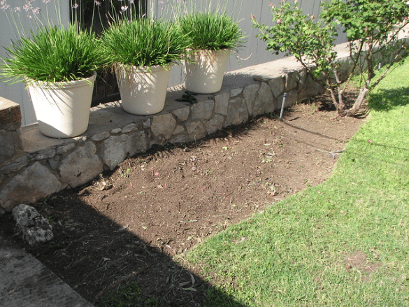 backyard bed cleared of weeds